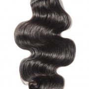burmese body wave single
